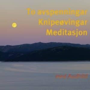 To avspenningar, knipeøvingar og meditasjon CD - Audhild Naustdal