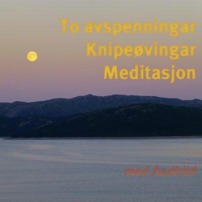 To avspenningar, knipeøvingar og meditasjon CD - Audhild Naustdal, norsk forside