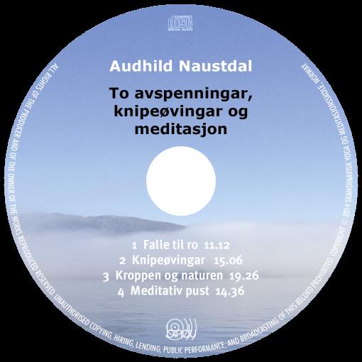 To avspenningar, knipeøvingar og meditasjon CD plate - Audhild Naustdal, norsk
