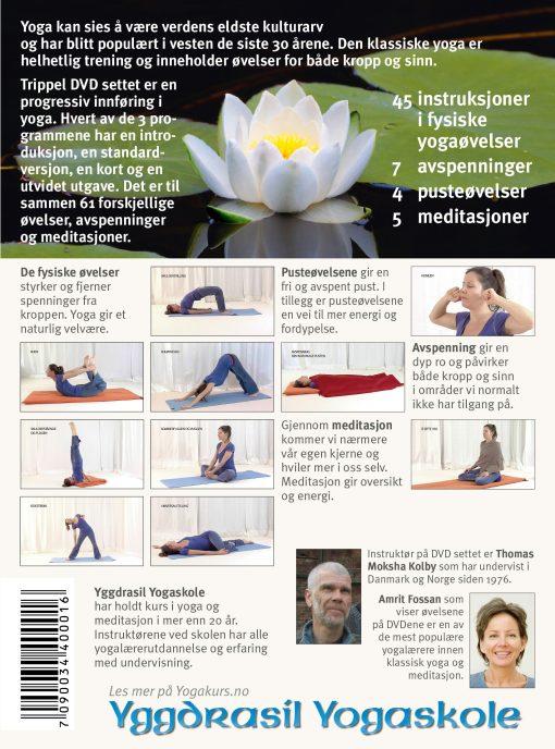 Yoga med Amrit: Klassisk yoga - 3 DVD, bakside